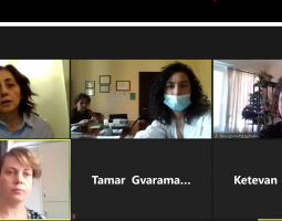 Online Meeting with PDO on Case Management